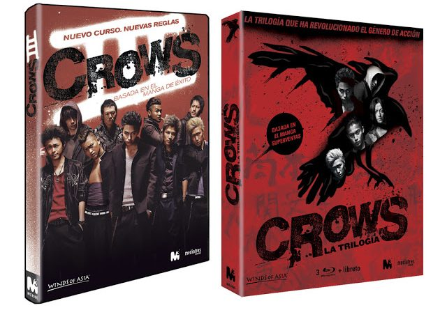 crows3