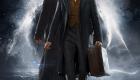'Animales fantásticos: Los crímenes de Grindelwald': Eddie Redmayne y Jude Law en el primer póster